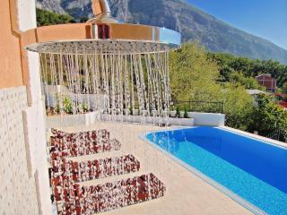 VILLA WITH POOL, GARDEN , NEAR  MOUNTAIN SEE VIEV - Makarska vacation rentals