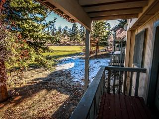 Sunny Side Up  #1343 - Big Bear Lake vacation rentals