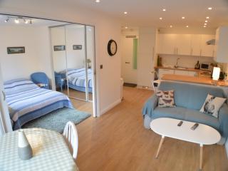 Harvey Goodwin Gardens Apartment - Cambridge vacation rentals