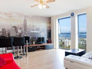 Modern 3 bedrooms flat, London Victoria 30 minutes - London vacation rentals
