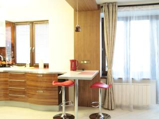Superb studio near Tulskaya subway - Russia vacation rentals
