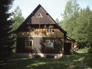 Holiday house in quiet surroundings - Harrachov vacation rentals