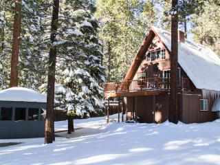 Multi-level A-Frame Cabin w/ PRIVATE HOT TUB,SAUNA - South Lake Tahoe vacation rentals