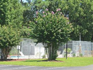 Glens Bay Retreat Quiet Secluded Beachgoer Paradise- 1356-203D - Surfside Beach vacation rentals
