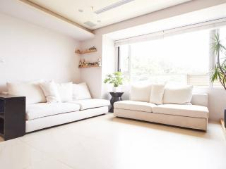 Green surrounding, Great views, entire appartment - Taipei vacation rentals