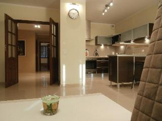 LEA  street -Three-room apartment with garage - Krakow vacation rentals
