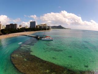 Aqua Palms / Free Parking & WiFi / Close to Beach - Honolulu vacation rentals