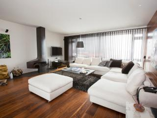 B14 Luxury Penthouse down town - Reykjavik vacation rentals