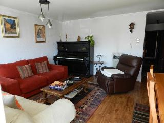 Comfort large Family Apartment Residential Area - Santiago vacation rentals