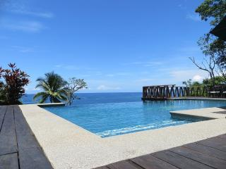 Tropical Beach House with Infinity Pool! - Cabo Blanco vacation rentals