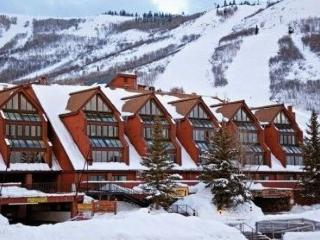 Lodge at Mountain Village 259 - Park City vacation rentals