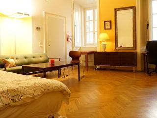 Best Location in Vienna - Vienna vacation rentals