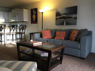 Budget Luxury - Dillon vacation rentals