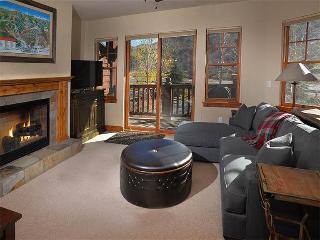 Lodge at Brookside #203 - Beaver Creek vacation rentals