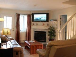 3BR Multi-level condo with walk-in closet - A3 306A - Lincoln vacation rentals