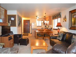 Beaver Village Condominiums #0221 - Winter Park vacation rentals