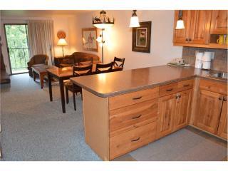 Beaver Village Condominiums #0422 - Winter Park Area vacation rentals