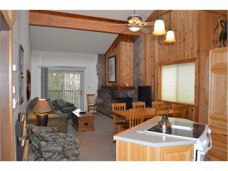 Beaver Village Condominiums #0534 - Winter Park Area vacation rentals