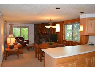 Beaver Village Condominiums #0724 - Winter Park vacation rentals