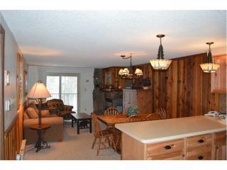 Beaver Village Condominiums #0922 - Winter Park Area vacation rentals