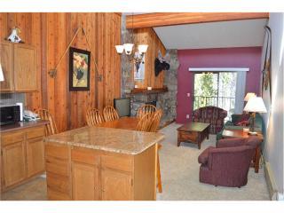 Beaver Village Condominiums #1633 - Winter Park vacation rentals