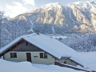 Apartment Chamomile - Chamonix vacation rentals