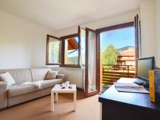 Agrocybe - 3846 - Montecampione - Montecampione vacation rentals