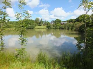 Blagdon Farm - Curlew - Ashwater vacation rentals