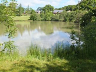 Blagdon Farm - Kingfisher - Ashwater vacation rentals