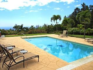Hale O Kip Estate - Kohala Coast vacation rentals