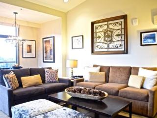 Luxurious Ski In/Ski Out Corner Unit 2BR Private Residence at The Beaver Creek Westin Riverfront, Sleeps 8 - Beaver Creek vacation rentals