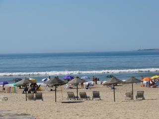 A stone throw away from it all !!! - Punta del Este vacation rentals