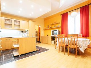 Spacious, well equipped Apartment in the City Center - Budapest vacation rentals