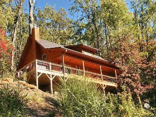 Panther Cat Perch - Black Mountain vacation rentals