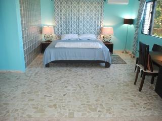 E&J Residences - Affordable Lux Ocean View Villa - Sosua vacation rentals