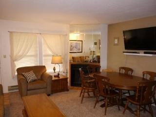 Budget condo with room for the whole family - Eden vacation rentals