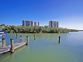 Naples - Tarpon Cove / Luxury huge High-Rise Condo - Naples vacation rentals