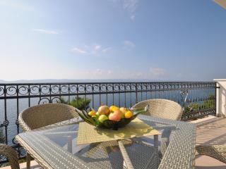 Apartment Rose Deluxe Maxi 4+2 - Pisak vacation rentals