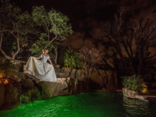 The Enchanted Manor -  A Magical Hidden Oasis!! - Simi Valley vacation rentals
