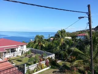 Wallhouse Holiday Apartment 2 - Dominica vacation rentals