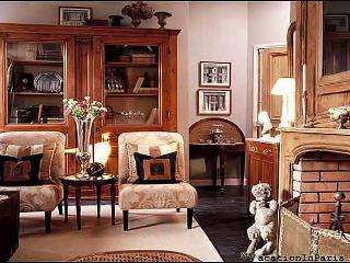 Luxury 2 Bedroom in the Latin Quarter of Paris - Paris vacation rentals