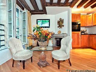 River-View One Bedroom in St.Germain - Ile-de-France (Paris Region) vacation rentals