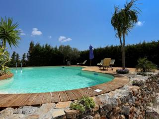 The Old Farmhouse - Giuncheto vacation rentals