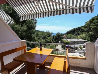Perfect oasis apartments on Mljet.. - Mljet vacation rentals