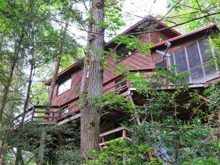 Pigeon River Hideaway-on the LITTLE PIGEON RIVER s - Sevierville vacation rentals