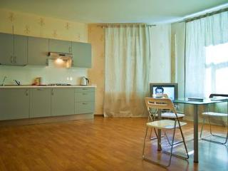 Apartment with Jacuzzi, WiFi internet and new eurostandart renovation. - Russia vacation rentals