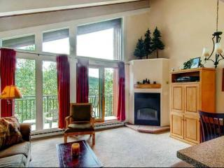 The West - Steamboat Springs vacation rentals