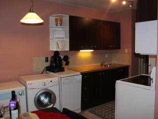 Bright&clean 1BD apt by LRT in centre of EDMONTON - Sherwood Park vacation rentals