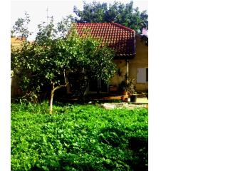 Jacuzzi and Yard in small house - Zichron Yaakov vacation rentals