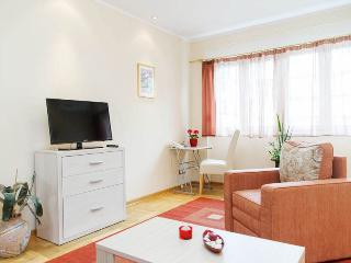 1 Bedroom CENTRAL Apt with CITY VIEW | 5 people - Belgrade vacation rentals